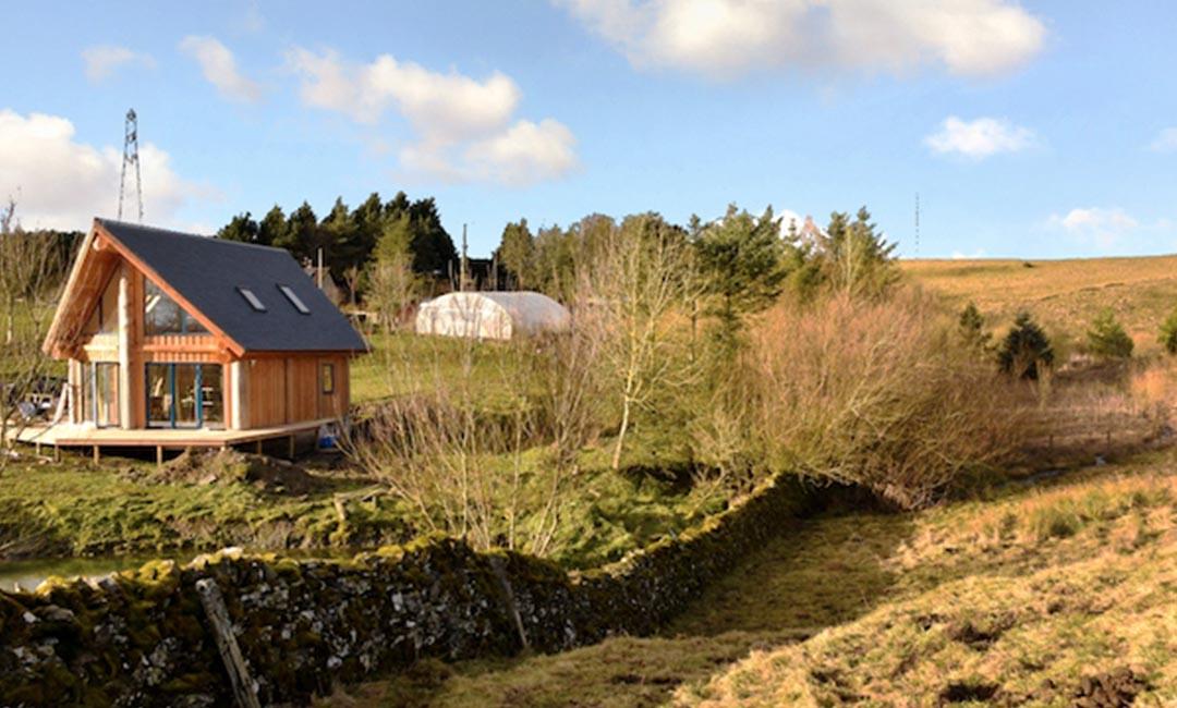 Fiddle Hill log home in landscape