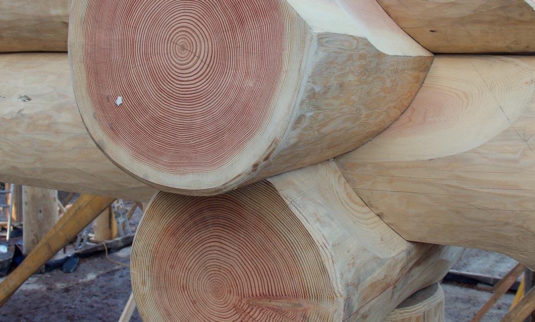 Woodburn dipper log home scotland - joint