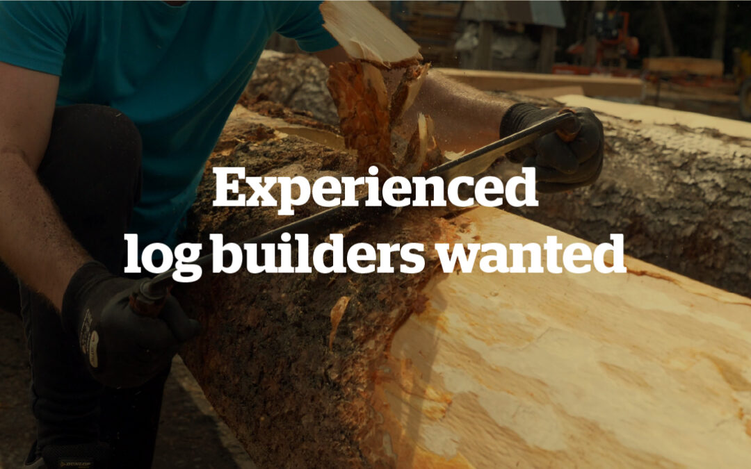 We are hiring – experience log builder